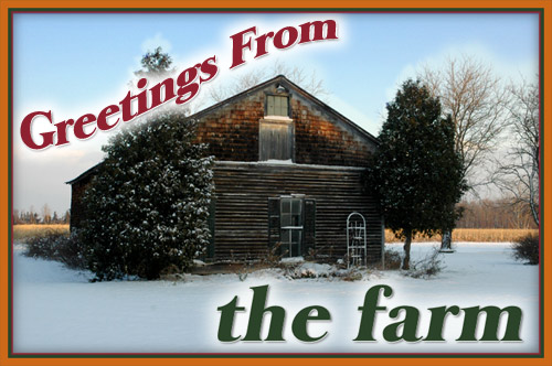 Greetings from Fireflys Farm