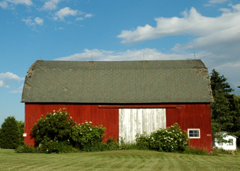 Beautiful Barn in Western New York