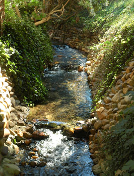 A beautiful stream in Colonial Williamsburg