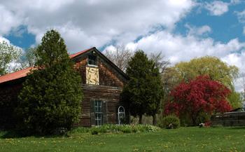 The barn and yard at fireflys farm
