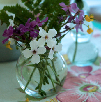 a pretty little bouquet of wildflowers on fireflys dinning room table