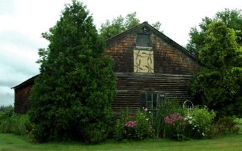Lush growth surrounds fireflys barn