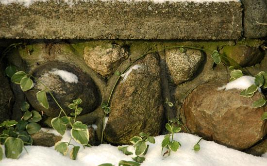 08dec08_stonesandvines