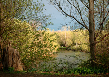 20may09_prettyriver2